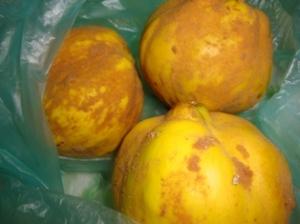 buah daripada mak long